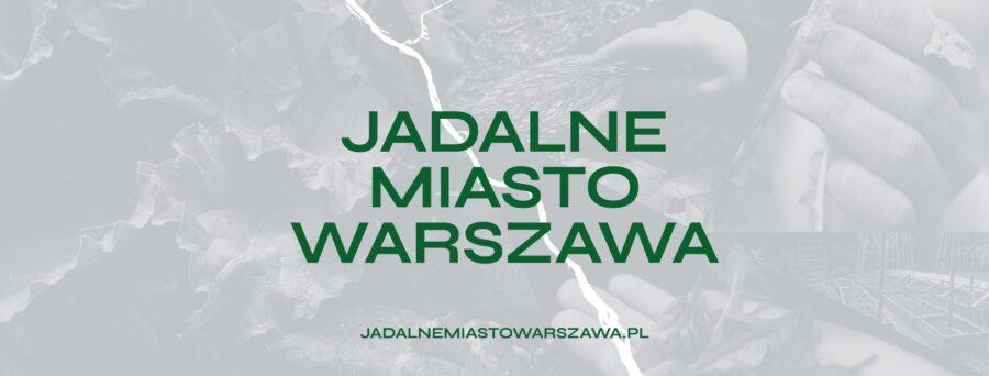 Projekt graficzny: Michał Dąbrowski